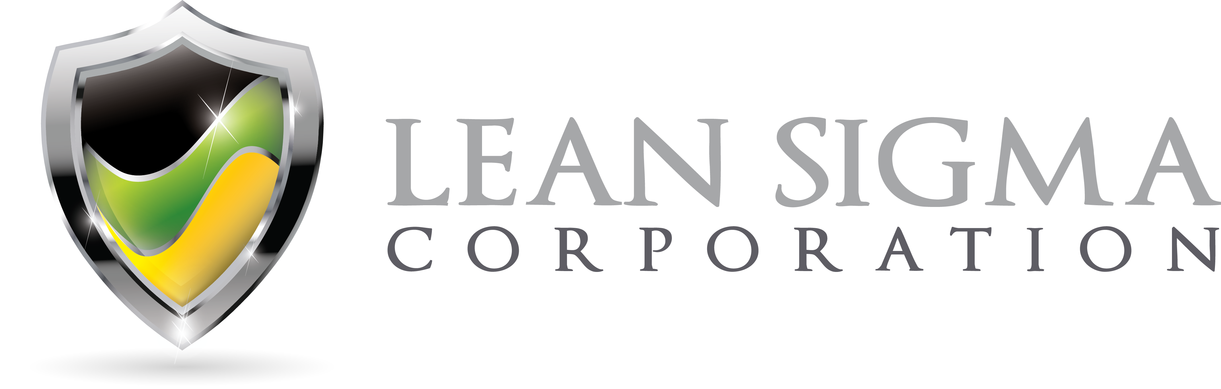 Lean Sigma Corporation Six Sigma Training Provider